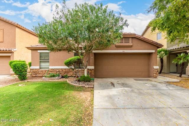 12901 W Windsor Avenue, Avondale, AZ 85392 (MLS #6299481) :: Elite Home Advisors