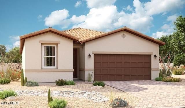 15678 W Jackson Street, Goodyear, AZ 85338 (MLS #6299482) :: Service First Realty