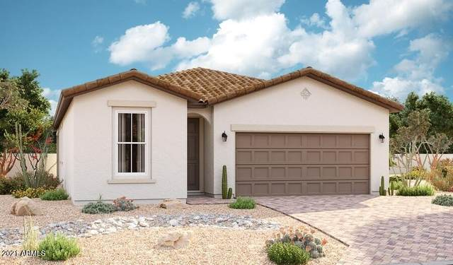 15669 W Jackson Street, Goodyear, AZ 85338 (MLS #6299485) :: Service First Realty