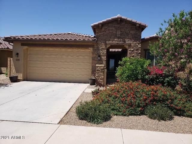 22204 N 182ND Lane, Surprise, AZ 85387 (MLS #6299500) :: Service First Realty