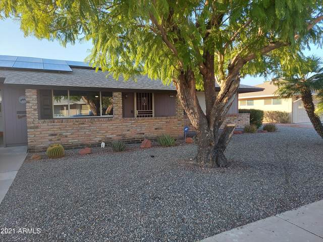 10736 W Roundelay Circle, Sun City, AZ 85351 (MLS #6299506) :: Service First Realty