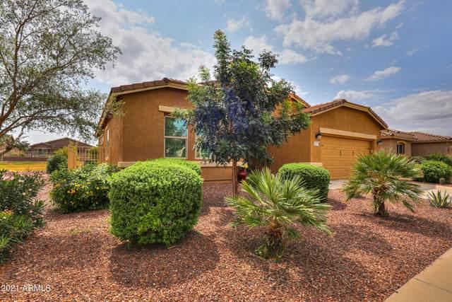 42055 W Solitare Drive, Maricopa, AZ 85138 (#6299513) :: AZ Power Team