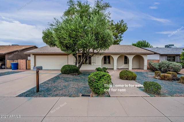 5236 S Clark Drive, Tempe, AZ 85283 (MLS #6299525) :: Elite Home Advisors