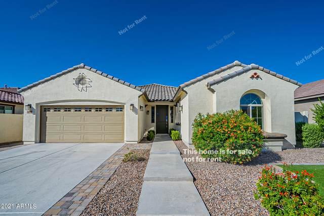 2828 E Russell Street, Mesa, AZ 85213 (MLS #6299531) :: Elite Home Advisors