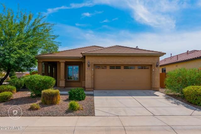 26083 W Oraibi Drive, Buckeye, AZ 85396 (MLS #6299535) :: Elite Home Advisors