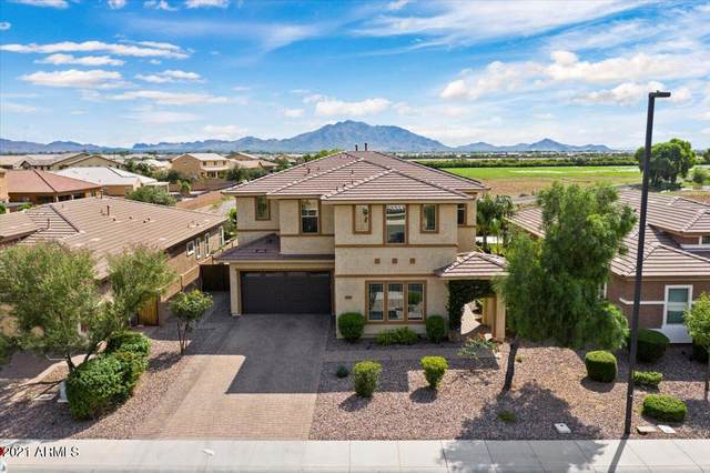 3593 E Appleby Drive, Gilbert, AZ 85298 (MLS #6299580) :: Yost Realty Group at RE/MAX Casa Grande