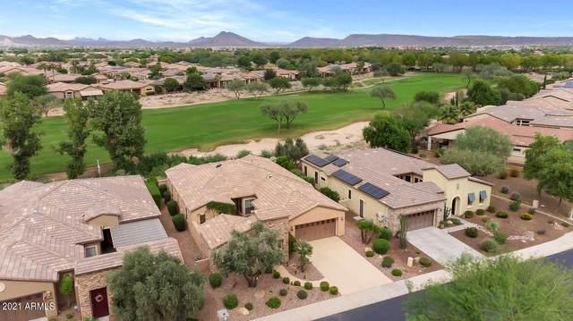 27484 N Cardinal Lane, Peoria, AZ 85383 (MLS #6299581) :: RE/MAX Desert Showcase