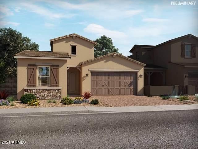 14078 W Desert Flower Drive, Goodyear, AZ 85395 (MLS #6299591) :: The Garcia Group