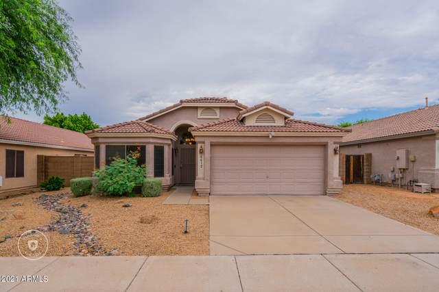 6612 W Paso Trail, Phoenix, AZ 85083 (MLS #6299597) :: Conway Real Estate