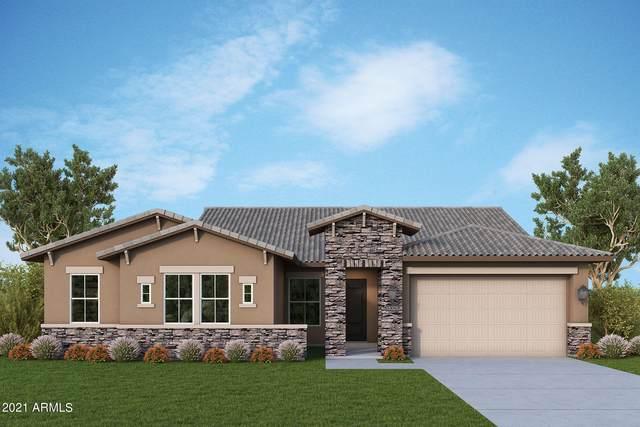13184 W Woodstock Road, Peoria, AZ 85383 (MLS #6299636) :: Elite Home Advisors