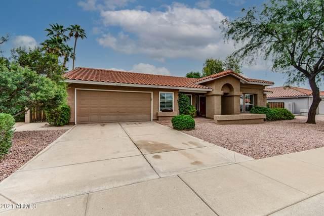 10731 N 103RD Way, Scottsdale, AZ 85260 (MLS #6299672) :: Elite Home Advisors