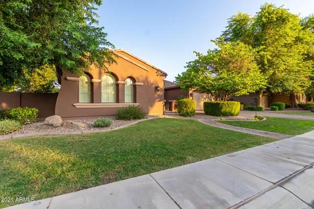 5219 S Luke Drive S, Chandler, AZ 85249 (MLS #6299698) :: Zolin Group