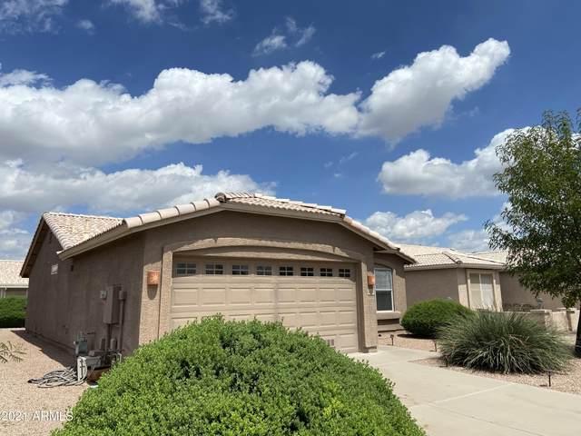 1462 E Torrey Pines Lane, Chandler, AZ 85249 (MLS #6299707) :: Yost Realty Group at RE/MAX Casa Grande