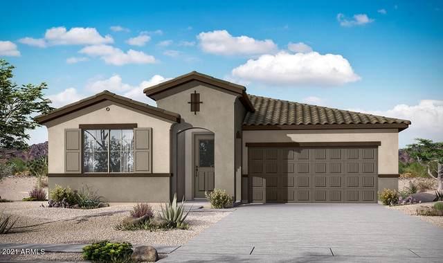 23031 E Quintero Road, Queen Creek, AZ 85142 (MLS #6299737) :: Elite Home Advisors