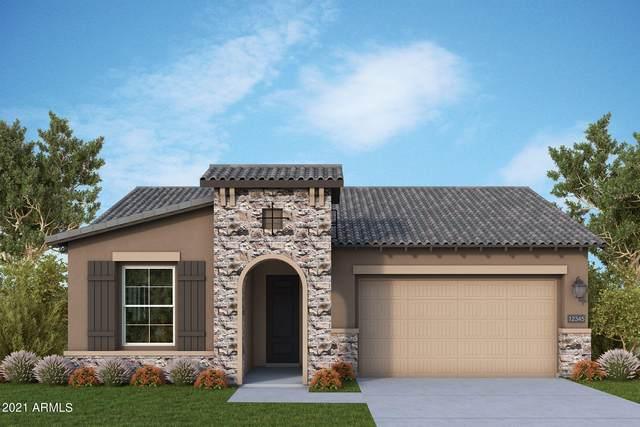 13236 W Horsetail Trail, Peoria, AZ 85383 (MLS #6299738) :: Elite Home Advisors