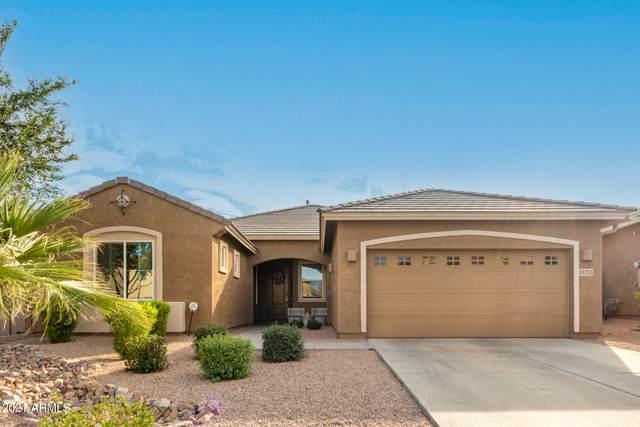 13213 W Cottontail Lane, Peoria, AZ 85383 (MLS #6299739) :: Elite Home Advisors