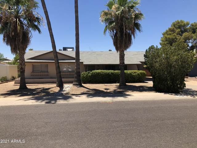14028 N 33RD Drive, Phoenix, AZ 85053 (MLS #6299779) :: Yost Realty Group at RE/MAX Casa Grande