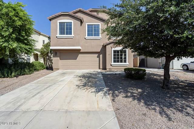 39641 N Luke Lane, San Tan Valley, AZ 85140 (MLS #6299846) :: Elite Home Advisors