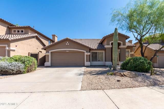 10511 E Tierra Buena Lane, Scottsdale, AZ 85255 (MLS #6299871) :: Klaus Team Real Estate Solutions