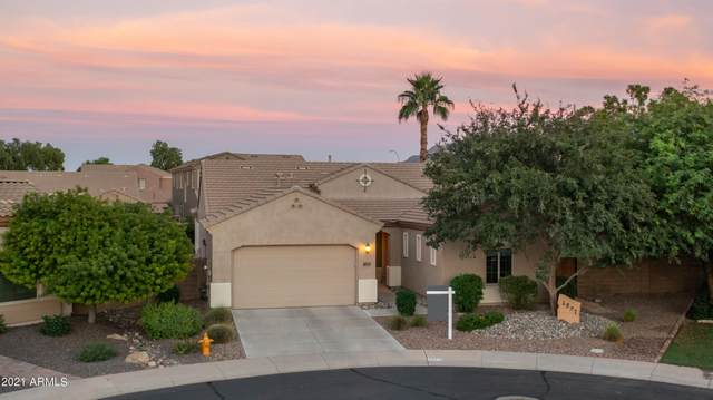 4897 E Hazeltine Court, Chandler, AZ 85249 (MLS #6300062) :: Elite Home Advisors