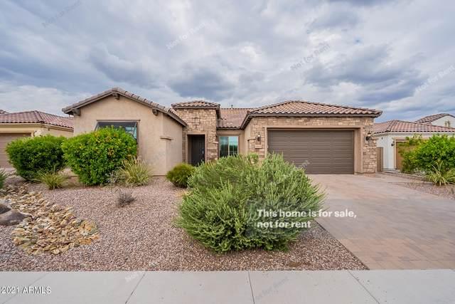 10618 E Ensenada Street, Mesa, AZ 85207 (MLS #6300072) :: Elite Home Advisors