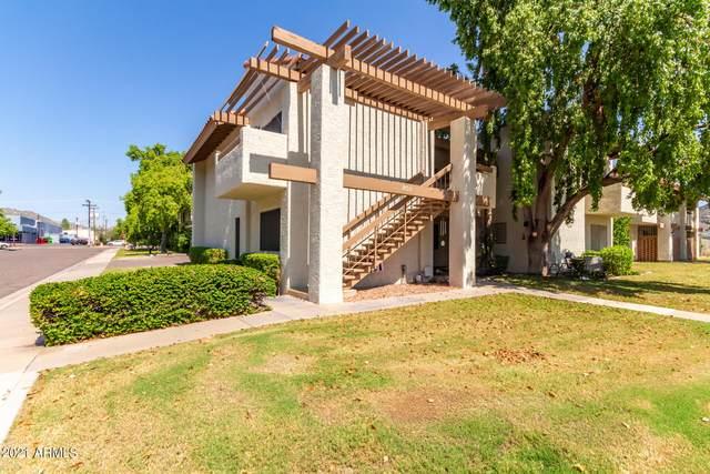 808 E Lawrence Lane #101, Phoenix, AZ 85020 (MLS #6300080) :: Elite Home Advisors
