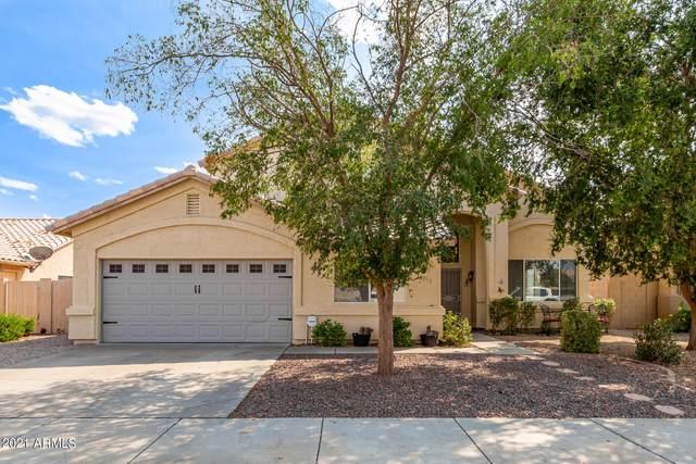 16253 W Jefferson Street, Goodyear, AZ 85338 (MLS #6300098) :: Elite Home Advisors