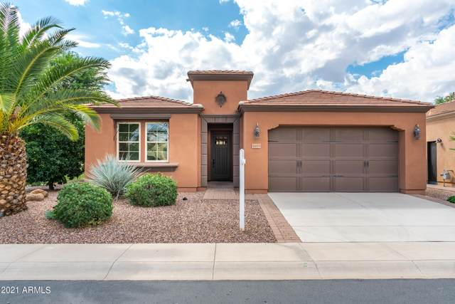 1695 E Adelante Way, Queen Creek, AZ 85140 (MLS #6300152) :: Elite Home Advisors