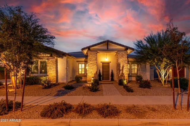 23040 E Desert Hills Drive, Queen Creek, AZ 85142 (MLS #6300176) :: Elite Home Advisors