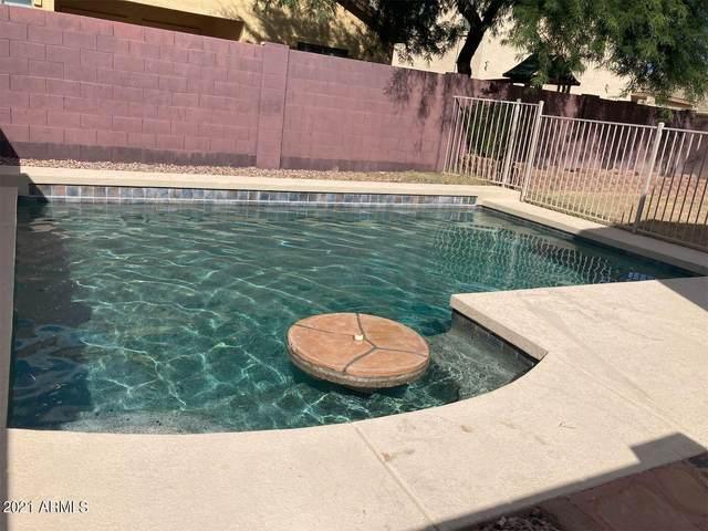16846 W Saguaro Lane, Surprise, AZ 85388 (MLS #6300261) :: Yost Realty Group at RE/MAX Casa Grande