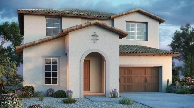 20988 E Thornton Road, Queen Creek, AZ 85142 (MLS #6300302) :: Elite Home Advisors