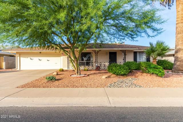 10328 W Twin Oaks Drive, Sun City, AZ 85351 (MLS #6300339) :: Elite Home Advisors