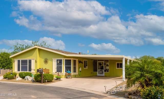 1074 E Eagle Drive, San Tan Valley, AZ 85140 (MLS #6300352) :: Elite Home Advisors