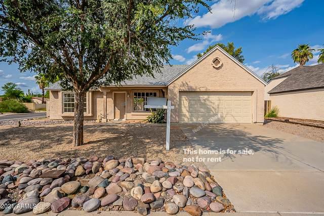 912 E Tonto Lane, Phoenix, AZ 85024 (MLS #6300356) :: Elite Home Advisors