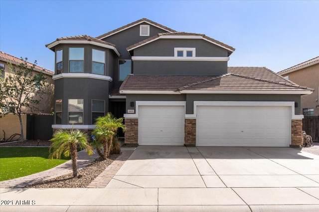 3421 W Morgan Lane, Queen Creek, AZ 85142 (MLS #6300367) :: Klaus Team Real Estate Solutions