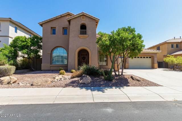 40219 N Hickok Trail, Phoenix, AZ 85086 (MLS #6300387) :: Klaus Team Real Estate Solutions