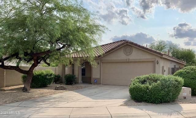 28802 N 51ST Street, Cave Creek, AZ 85331 (MLS #6300413) :: Elite Home Advisors