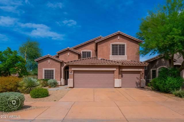 3220 W Languid Lane, Phoenix, AZ 85086 (MLS #6300439) :: Elite Home Advisors