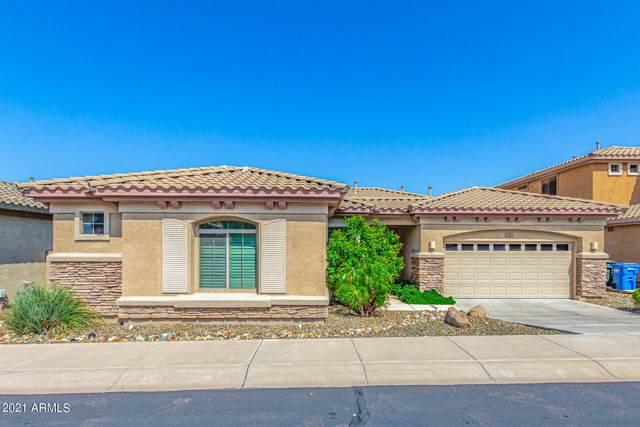 2410 W Mineral Road, Phoenix, AZ 85041 (MLS #6300454) :: Yost Realty Group at RE/MAX Casa Grande