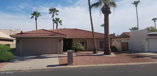 10831 E Sunnydale Drive, Sun Lakes, AZ 85248 (MLS #6300515) :: Elite Home Advisors