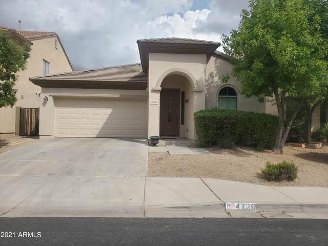 4326 W Heyerdahl Drive, New River, AZ 85087 (MLS #6300564) :: Elite Home Advisors