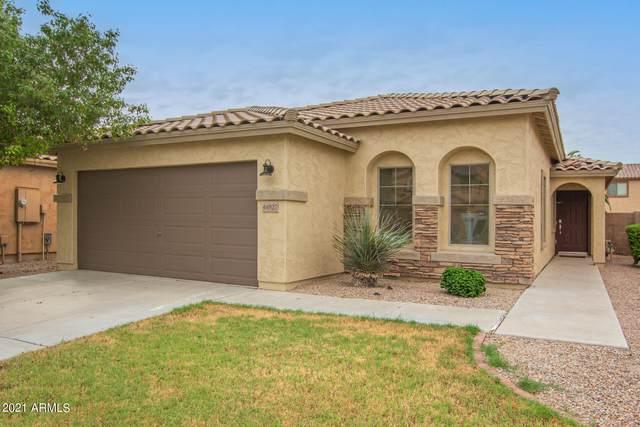 44827 W Paitilla Lane, Maricopa, AZ 85139 (MLS #6300592) :: Dijkstra & Co.
