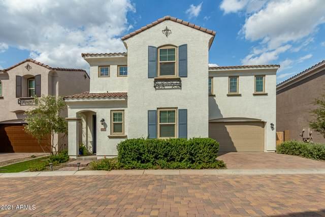 17371 N 10TH Street, Phoenix, AZ 85022 (MLS #6300622) :: The Luna Team