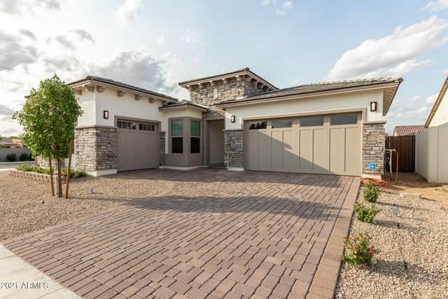 2056 E Sagittarius Place, Chandler, AZ 85249 (MLS #6300625) :: Elite Home Advisors