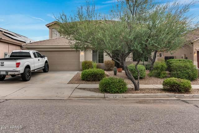 33411 N 24TH Drive, Phoenix, AZ 85085 (MLS #6300663) :: Elite Home Advisors