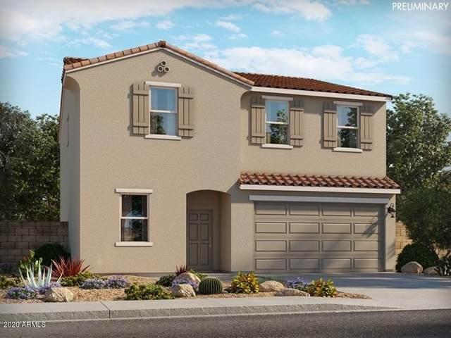 4541 E Italian Trotter Road, San Tan Valley, AZ 85140 (MLS #6300682) :: Elite Home Advisors