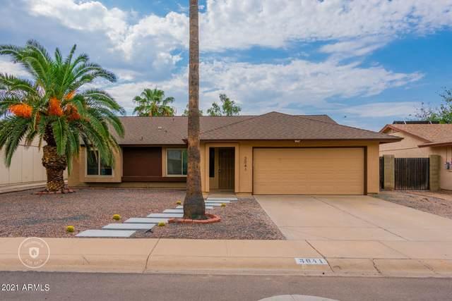 3041 E Bremen Street, Phoenix, AZ 85032 (MLS #6300696) :: Elite Home Advisors