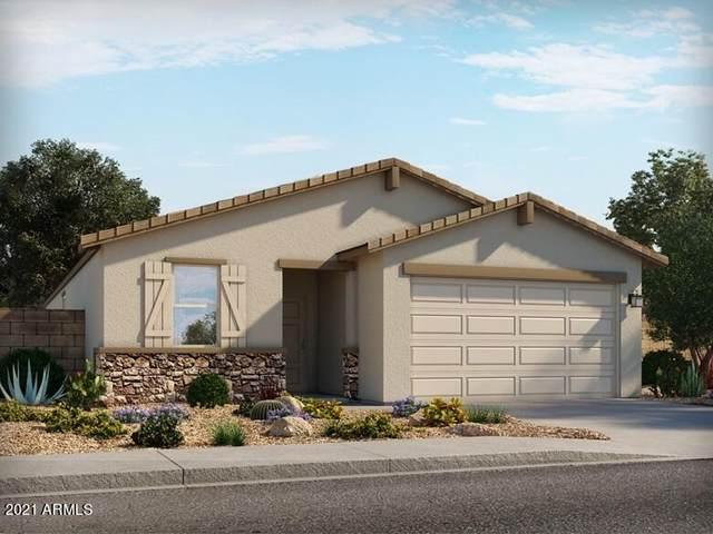 4559 E Italian Trotter Road, San Tan Valley, AZ 85140 (MLS #6300700) :: Elite Home Advisors