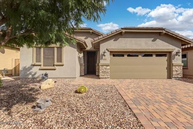 362 E Red Mesa Trail, San Tan Valley, AZ 85143 (MLS #6300806) :: Dijkstra & Co.
