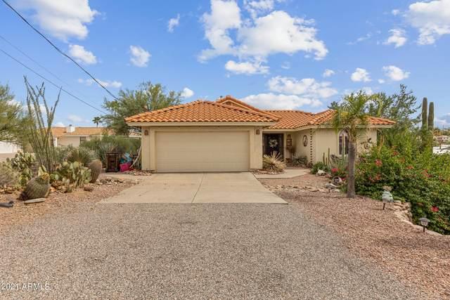 522 E Queen Valley Drive, Queen Valley, AZ 85118 (MLS #6300826) :: Elite Home Advisors